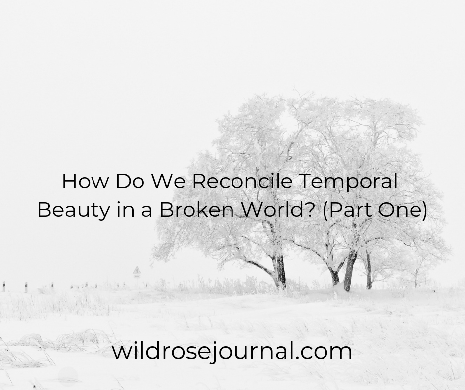How Do We Reconcile Temporal Beauty in a Broken World? (Part One)