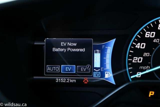 EV choices