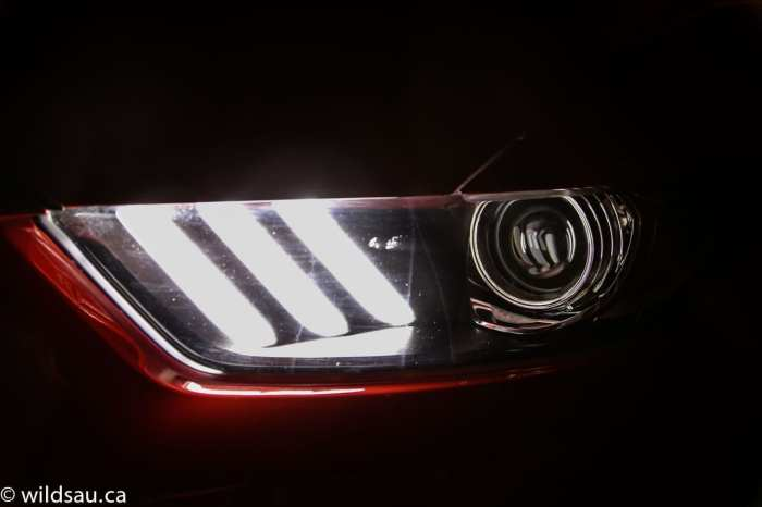 headlight stripes dark