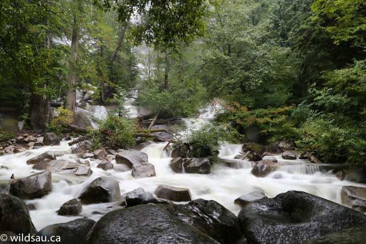 Shannon Falls running water