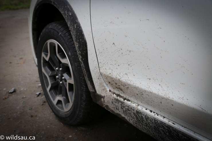 muddy sill