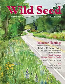 Wild Seed Magazine 2017