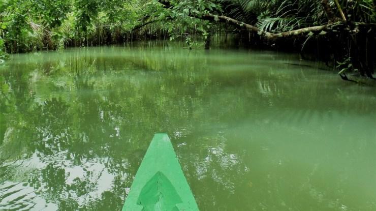 river tours siargao san isidro boat canoe canoeing kayaking river siargao island