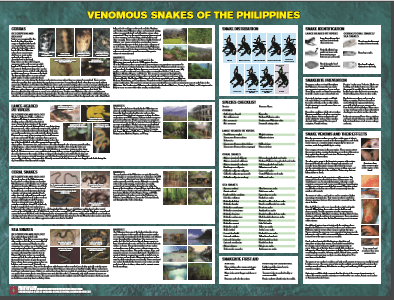 Venomous Snakes of the Philippines