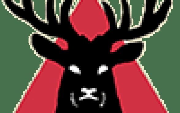event video maker brighton london