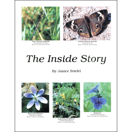 The Inside Story, by Janice Stiefel