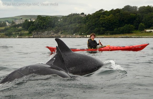 180714-Derry-Donegal swims 054b