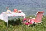 Elegant afternoon picnic