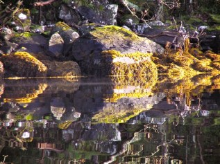 Reflections at Scotnish