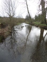 The River Chess