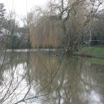 Wellies along the Colne: London Colney and Colney Hatch