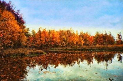 fall_pond_glow
