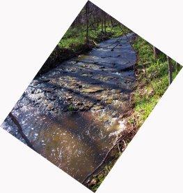 mid_april_creek_2011