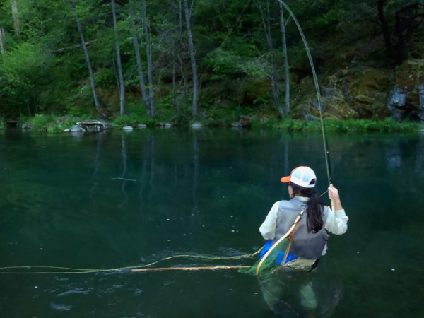 61811 McCloud River Fly Fishing Wild Waters Fly Fishing