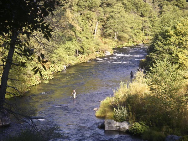 McCloud River Fall Fly Fishing 10141511 Wild Waters