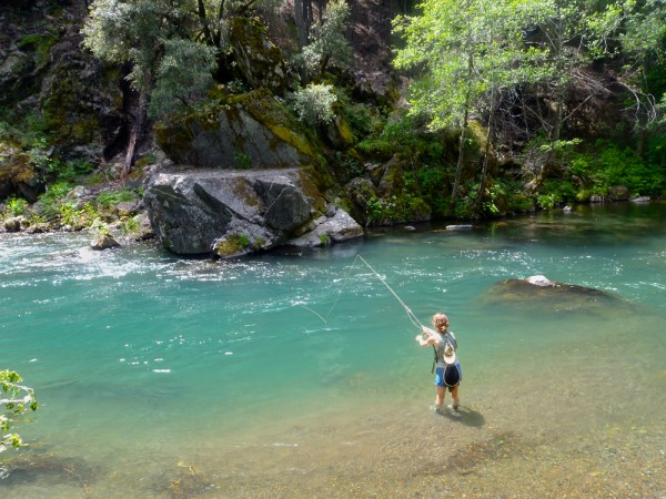 McCloud Fly Fishing Adventures Wild Waters Fly Fishing