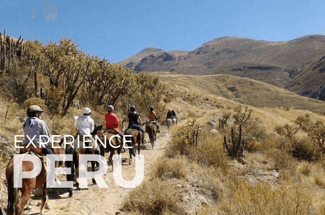 Colca Canyon Riding Adventure