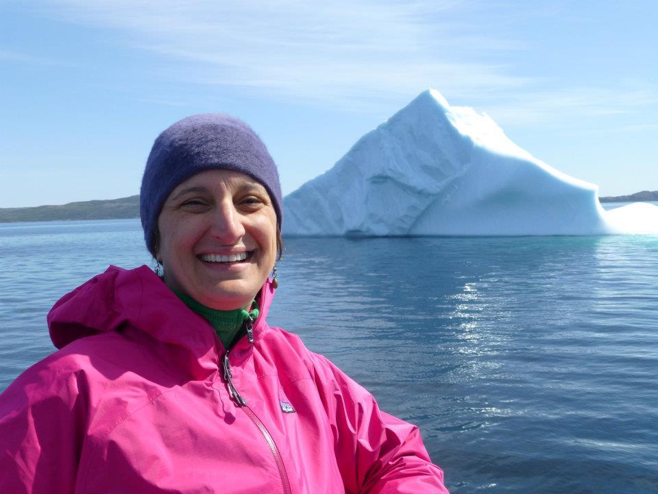 Icebergs and Arts Adventure