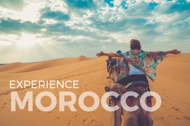 Mosaic of Wild Morocco