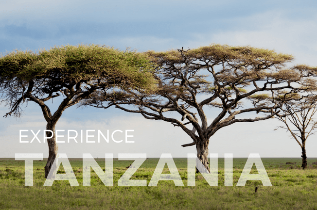 Tanzania Trek and Safari