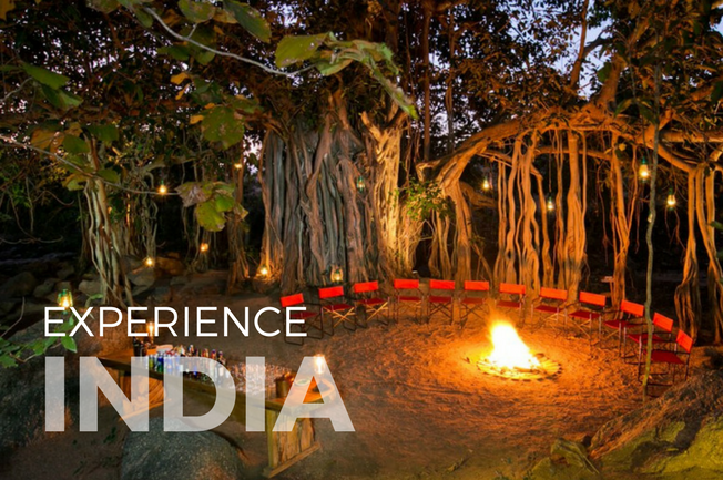 India Jungles and Jewels Adventure