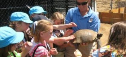 Kids touching tortoise