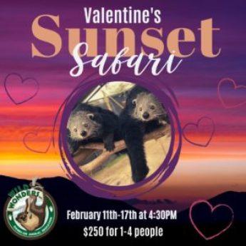 Valentine's Sunset Safari