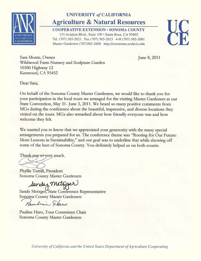 Thank You Letter For Participation In An Event   Curriculum