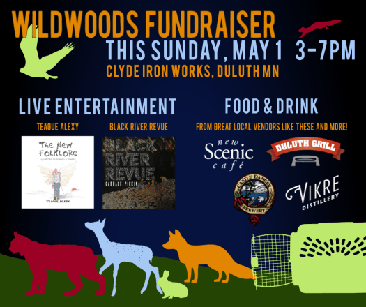 This Sunday, May 1 2016, Support Wildwoods at Clyde Iron Works in Duluth Minnesota