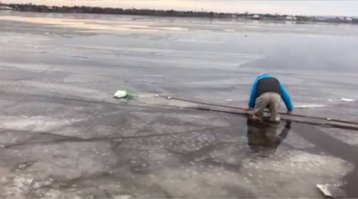 Rich built a long pole and net to safely scoot the owl over the ice