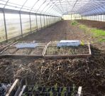 08_right_polytunnel