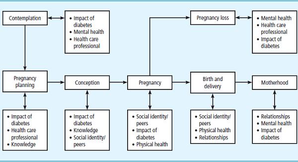 Pregnancy_Figure_2