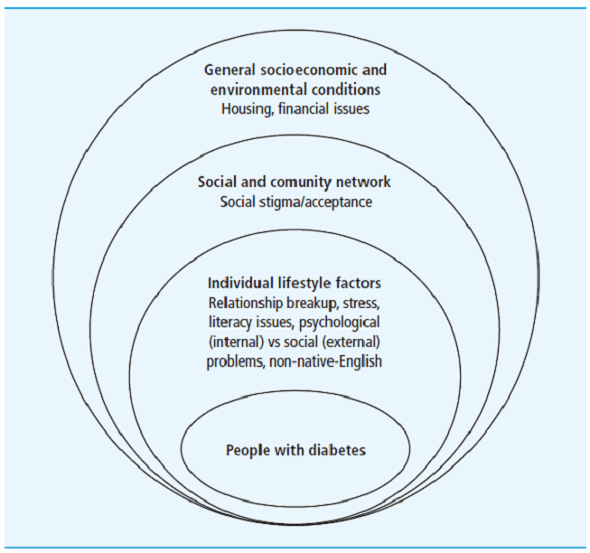 Influences of social issues on type 1 diabetes self-management: are