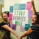 Study Buddies Wall