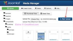 Joomla 3 media manager
