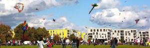 Drachenfest Ostfildern Scharnhauser Park