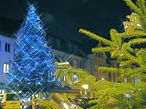 Weihnachtsbaum gegenüber der Kelter in Wangen 2016