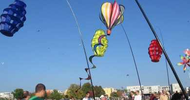 3.10.2019: Drachenfest im Scharnhauser Park