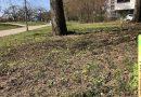Ilse-Beate-Jäkel-Weg: Baustelle startet später