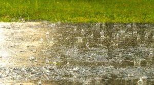 Regen prasselt auf eine Straße vor einer Wiese