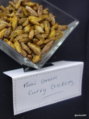 Rentokil Pestaurant - Thai Green Curry Crickets... tasted like curry rice crackers