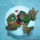 """Frogs Legs (and head)"" Cupcakes"