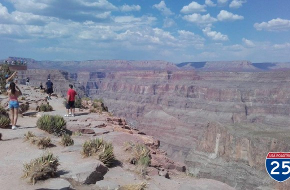 Postcard from America: Day 9 – Cowabunga Tours
