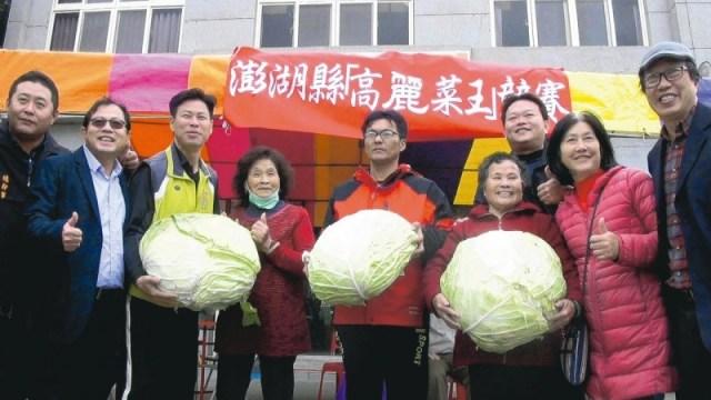 「用心」種高麗菜 83歲阿嬤雙冠王