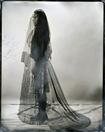 Alexandra Opie, [italics] Echo no. 236 [/italics], 2014