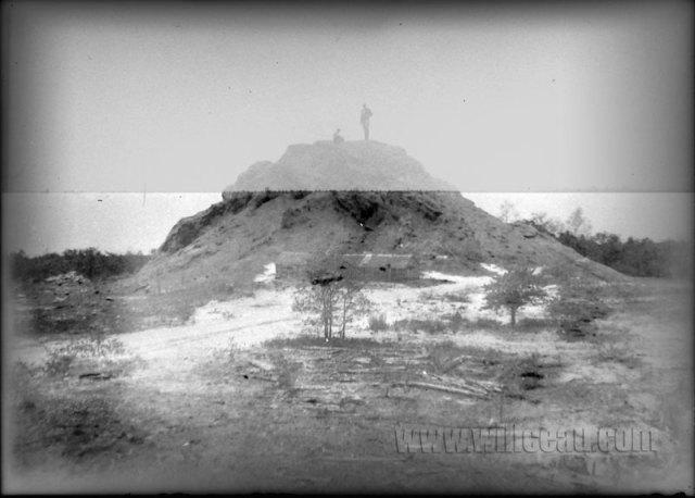 sawdust-pile-2