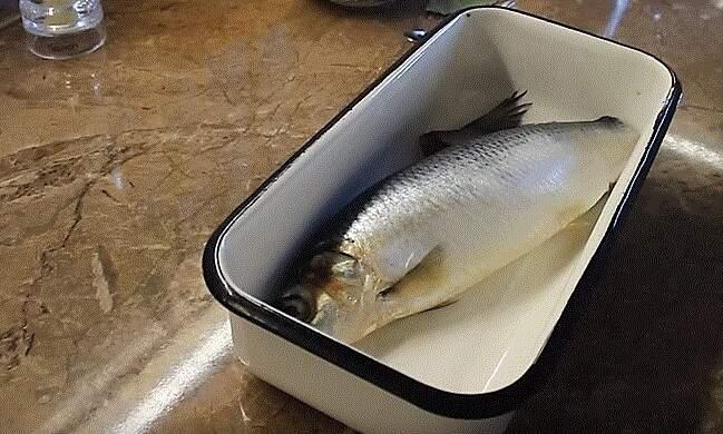 Fisk i brett