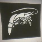 Prawn stencil projection