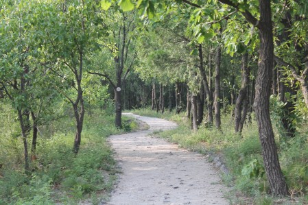 Mangshan Trail