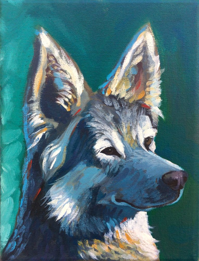 16×20″ Pet Portrait